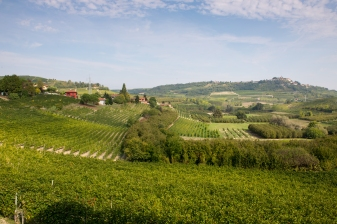 Trips-Piemonte5