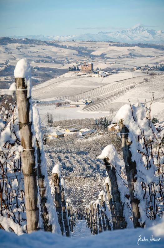 winter at grinzane cavour